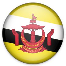 How to call Brunei Darussalam?