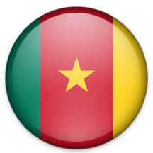 How to call Cameroon?